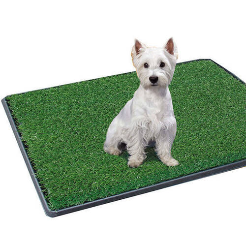 51 x 64 cm Potty Patch Dog Toilet Training